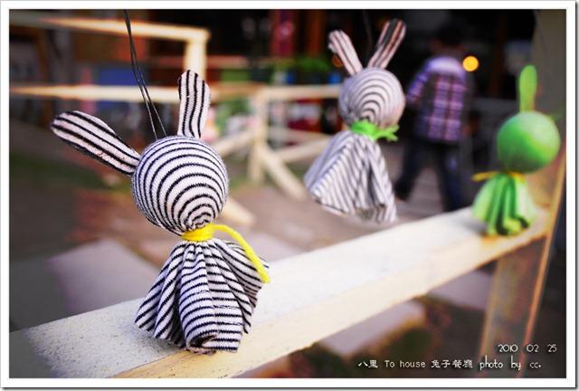 20100225_rabbit (11)