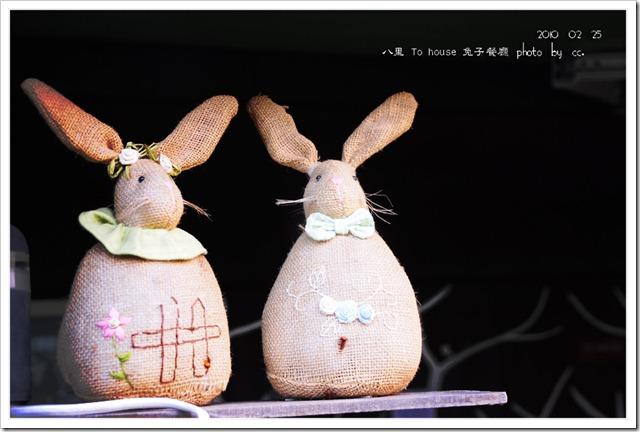 20100225_rabbit (12)