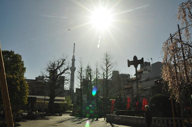 2013.03.21 淺草-上野-銀座-台場 (39)
