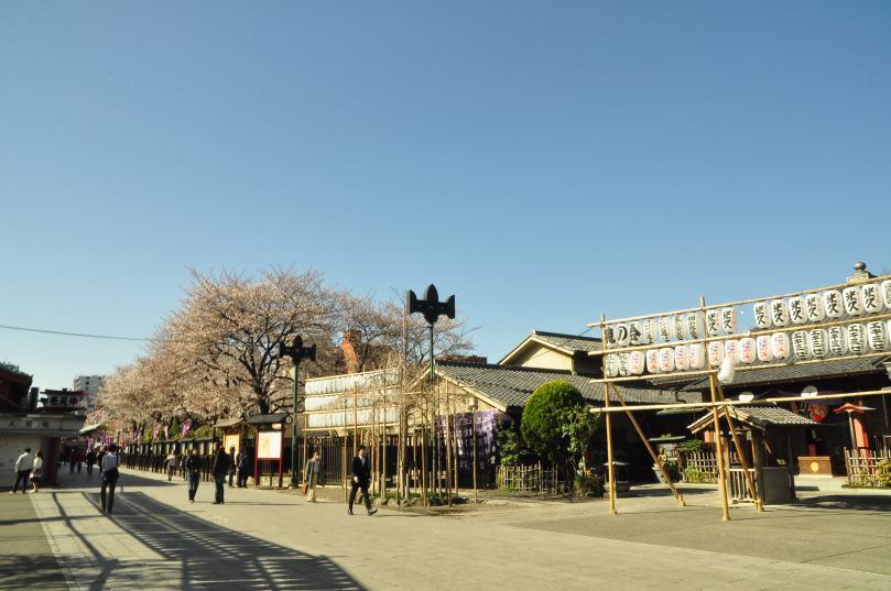 2013.03.21 淺草-上野-銀座-台場 (40)