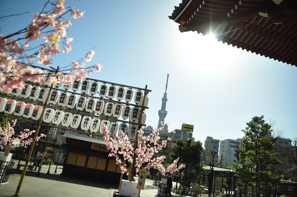 2013.03.21 淺草-上野-銀座-台場 (44)